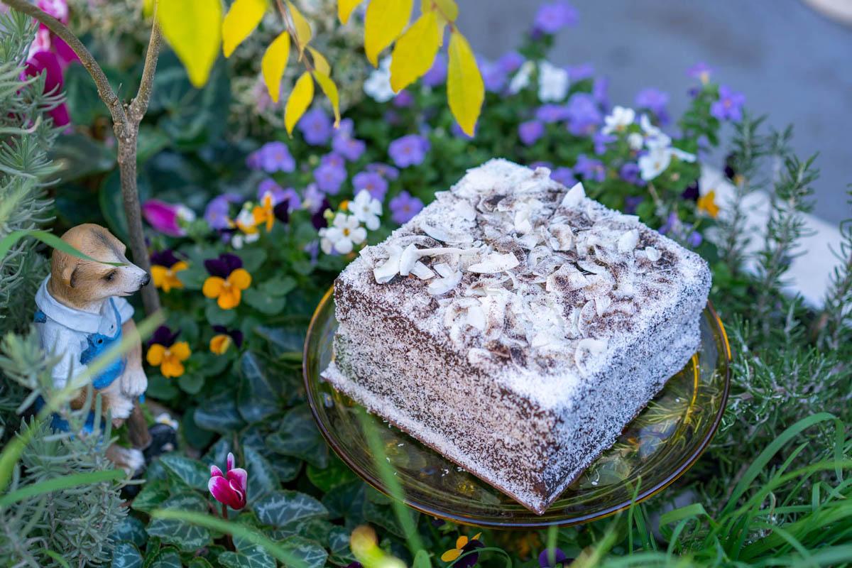 Flour Drum Mini Lamington Tiramisu